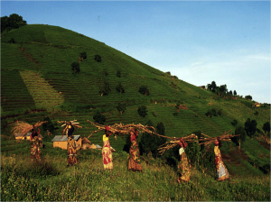 congo-2-women-walking-through-fields