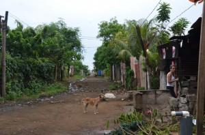 Quartiere dove la nuova scuola